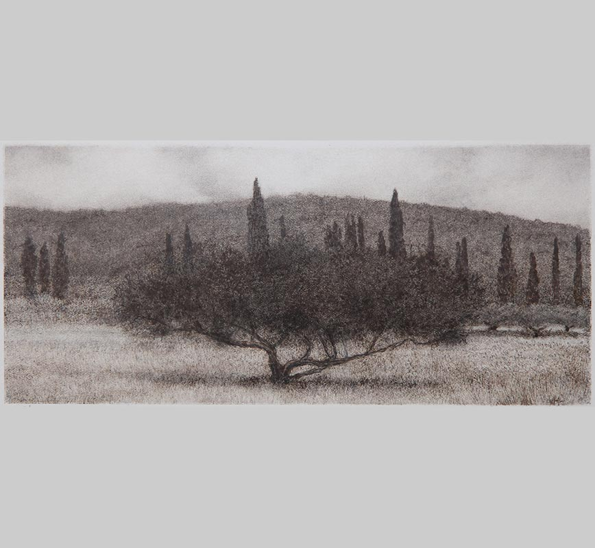 Greek landscape painting. Olive and cypress trees in a field. Title: Olive Tree in Field