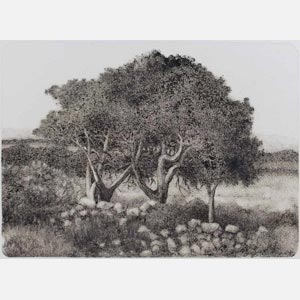 Greek landscape painting. Wild olive trees in a field. Title: Tree