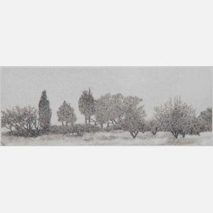 Greek landscape painting. Wild olive atrees in a field. Title: Trees in Mist